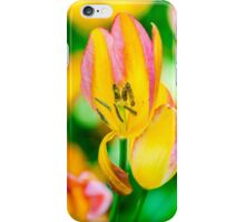 Tulips Enchanting 49 iPhone Case/Skin