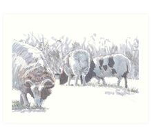 Sheep with patches of brown wool Art Print