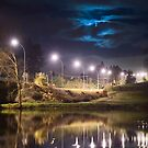 Wairoa River at night 9 by Paul Mercer