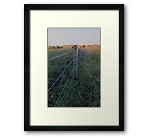 sunset in the paddock Framed Print