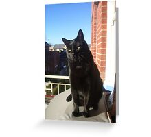 Balcony Bill Greeting Card