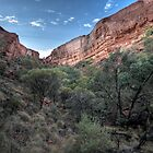 Kings Canyon • Northern Territory by William Bullimore