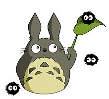 Totoro by Carcast