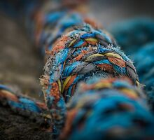 Colours of the sea by TinDog