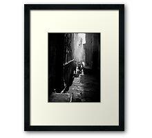 Shy Boy Framed Print