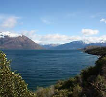 Lake Wakatipu II by Paul Duckett