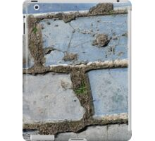 The Fragrance of Blue Pavement iPad Case/Skin