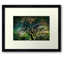 The Psychedelic Tree Framed Print