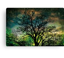 The Psychedelic Tree Canvas Print