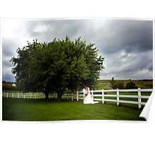 Picture Perfect Day Poster