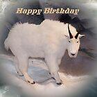 Mountain Goat Happy Birthday Card by Jonice