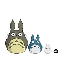 My cute version of Totoro and friends Photographic Print