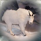 Mountain Goat by Jonice