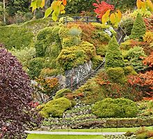 Butchart Gardens Stairway to Heaven by AnnDixon