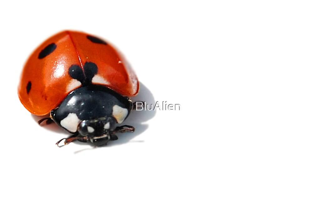 Love Bug by BluAlien