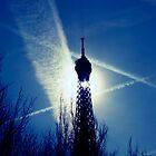 When the sun shines on the Tour Eiffel by faithie