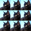 Black Cat- Warhol Style by cathyjacobs