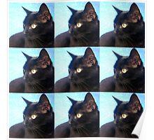 Black Cat- Warhol Style Poster