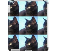 Black Cat- Warhol Style iPad Case/Skin