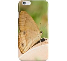 Brown Ringlet Butterfly iPhone Case/Skin