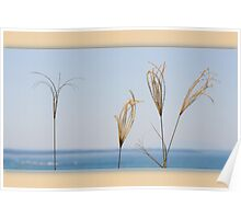 seaside whisper Poster