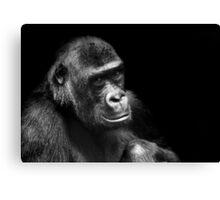 Gorilla.... Canvas Print