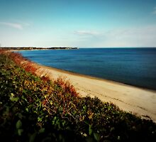 Overlooking Manomet Beach by Bine