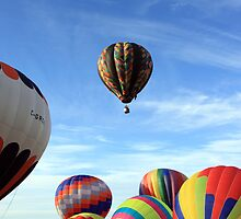 seven hot air balloons by Jamie Roach