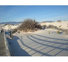 White Sands Boardwalk Photographic Print