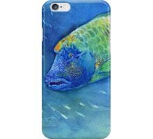 Sad Fish iPhone Case/Skin