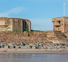 Fort Henry by tracesofwar