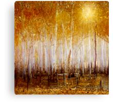 Where the Sun Shines Canvas Print