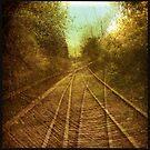 Rail by Jean-François Dupuis