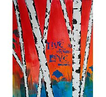 Live and Love Photographic Print