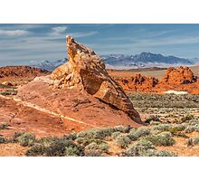 Little Monument in Valley of Fire Photographic Print