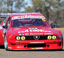 Tony Ricciardello (Front On) - Kerrick Sports Sedan National Series Race by Gino Iori