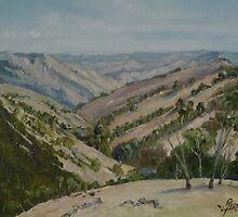 Vast Valley by Diko