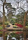 Savill Gardens, Windsor by Astrid Ewing Photography