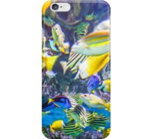 Colorful Tropical Fish iPhone Case/Skin