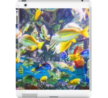Colorful Tropical Fish iPad Case/Skin
