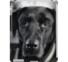 Black and Lab iPad Case/Skin