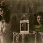Edwardian #1 by TanyaDuffy