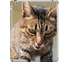 Tabby Cat Looking Down From A Height iPad Case/Skin