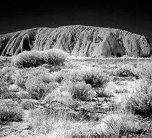 Uluru in IR by Hans Kawitzki