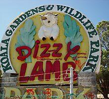 Dizzy Lamb, Wanneroo by TheLazyAussie