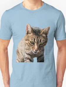 Tabby Back Looking Down Background Removed Unisex T-Shirt