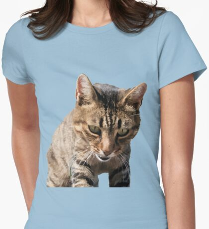 Tabby Back Looking Down Background Removed Womens Fitted T-Shirt