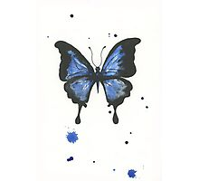 Inky butterfly Photographic Print