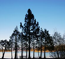 Emerald Bay Silhouette by tom j deters
