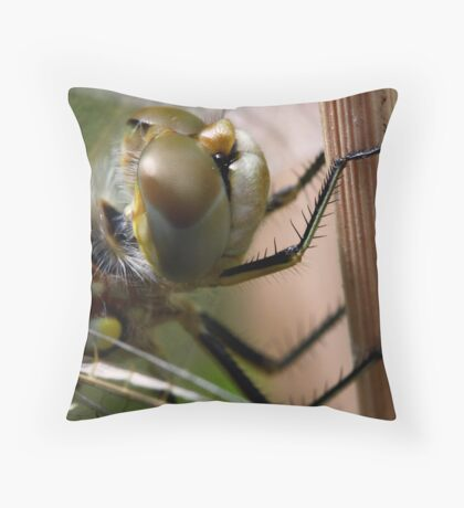 Variegated Meadowhawk Portrait Throw Pillow